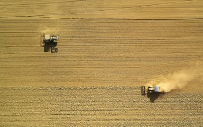 two combines in a field